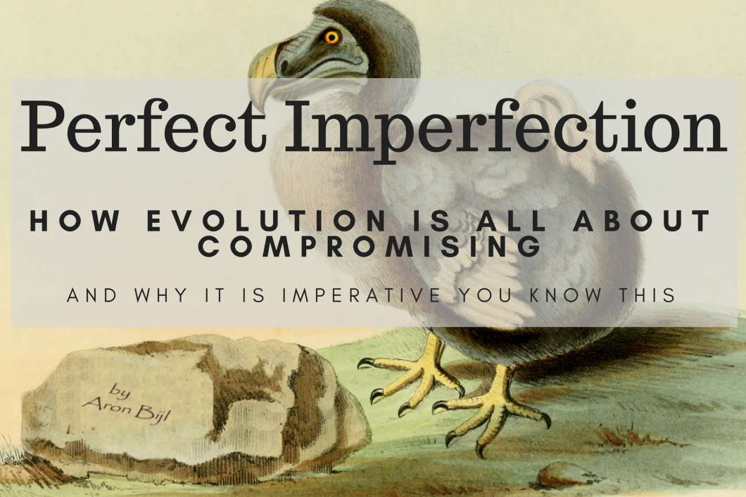 Perfect Imperfection - How evolution is all about compromise